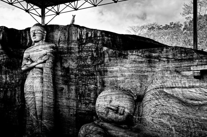 Sleeping Buddha, Polonnaruwa, Sri Lanka, 2013